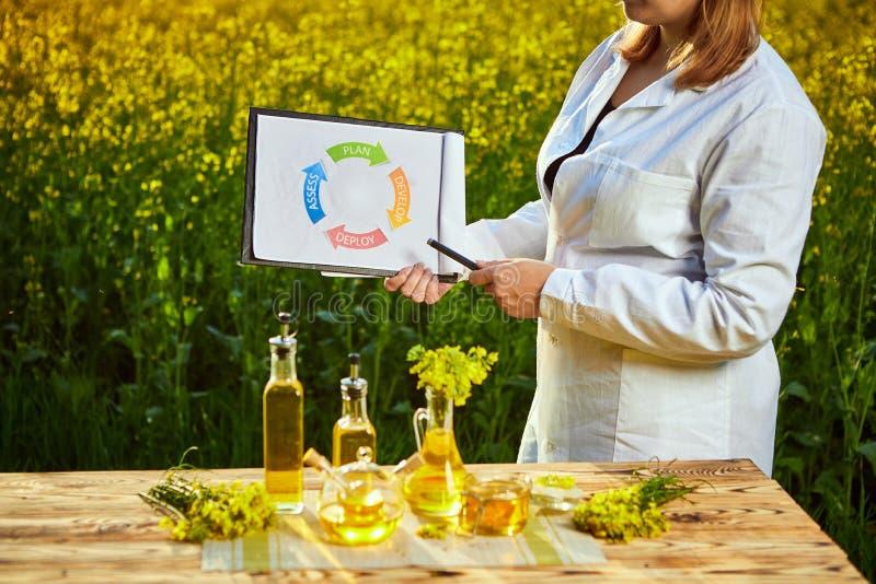 Η γυναίκα ή ο αγρότης γεωπόνων εξετάζει τον ανθίζοντας τομέα canola βιασμών χρησιμοποιώντας την ταμπλέτα με infographic στοκ εικόνες με δικαίωμα ελεύθερης χρήσης