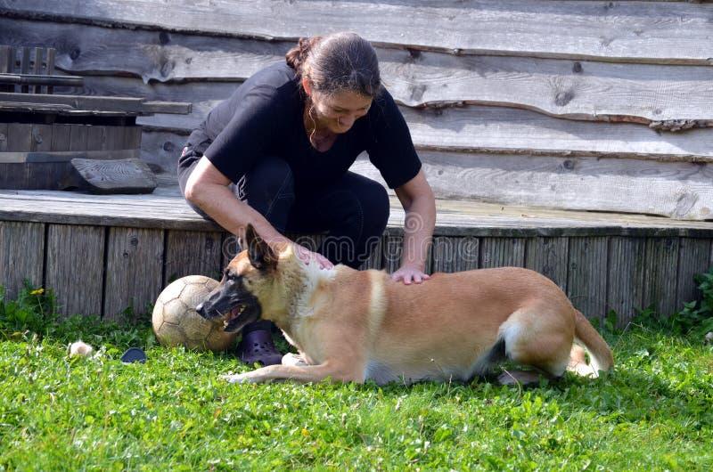 Η γυναίκα βουρτσίζει το σκυλί της στοκ φωτογραφία με δικαίωμα ελεύθερης χρήσης