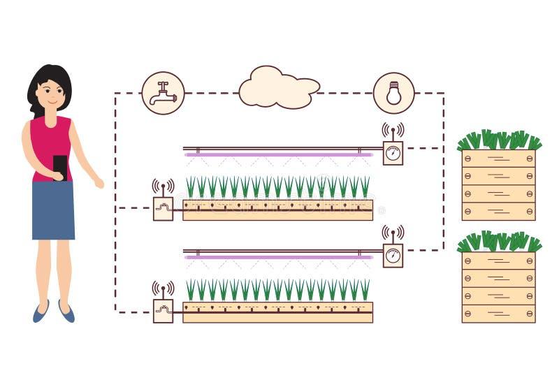 Η γυναίκα ελέγχει το έξυπνες αγρόκτημα και τη γεωργία απεικόνιση αποθεμάτων