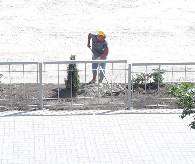 Η γυναίκα με μια τσουγκράνα μεταχειρίζεται το έδαφος κοντά fir-tree earthwork Αγροτική δραστηριότητα o στοκ φωτογραφία με δικαίωμα ελεύθερης χρήσης
