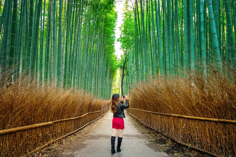 Η γυναίκα παίρνει μια φωτογραφία στο δάσος μπαμπού στο Κιότο, Ιαπωνία στοκ φωτογραφίες με δικαίωμα ελεύθερης χρήσης