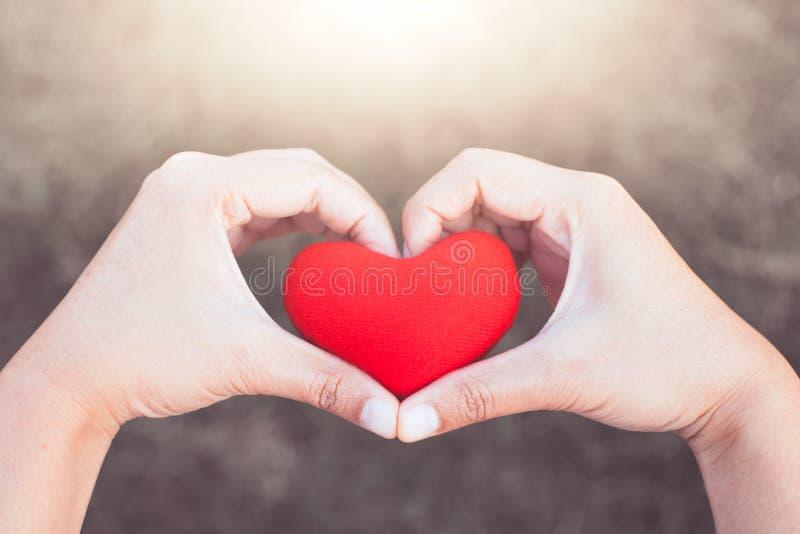 Η γυναίκα που κρατά την κόκκινη καρδιά και κάνει τη μορφή καρδιών χεριών στοκ εικόνα