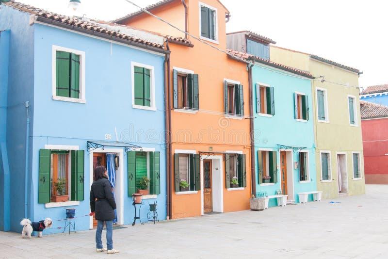 Η γυναίκα που περπατά ένα άσπρο σκυλί χρωμάτισε πλησίον τα σπίτια σε Burano, κοντά στη Βενετία, Ιταλία στοκ εικόνα