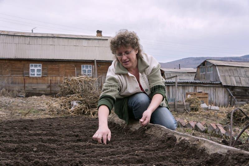 Η γυναίκα σπέρνει τους σπόρους στην κορυφογραμμή στον κήπο, στα πλαίσια του χωριού στοκ εικόνα με δικαίωμα ελεύθερης χρήσης