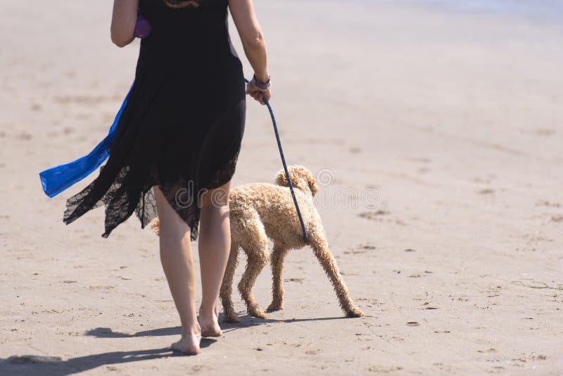 Η γυναίκα στο μαύρο φόρεμα οδηγεί το σκυλί στο λουρί στην παραλία στοκ φωτογραφία με δικαίωμα ελεύθερης χρήσης