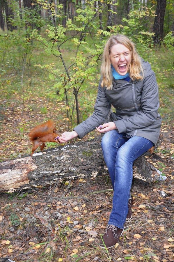 Η γυναίκα στο σκίουρο ξύλων δαγκώνει το χέρι στοκ φωτογραφία με δικαίωμα ελεύθερης χρήσης