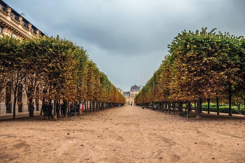 Η διάβαση και ο κήπος ευθυγράμμισαν τα δέντρα τη βροχερή ημέρα στο Palais Royal στο Παρίσι στοκ φωτογραφίες με δικαίωμα ελεύθερης χρήσης