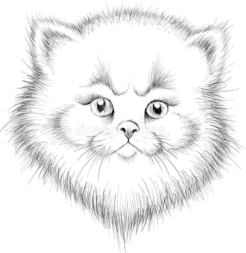 Η διανυσματική γάτα λογότυπων για την μπλούζα στοκ εικόνες με δικαίωμα ελεύθερης χρήσης