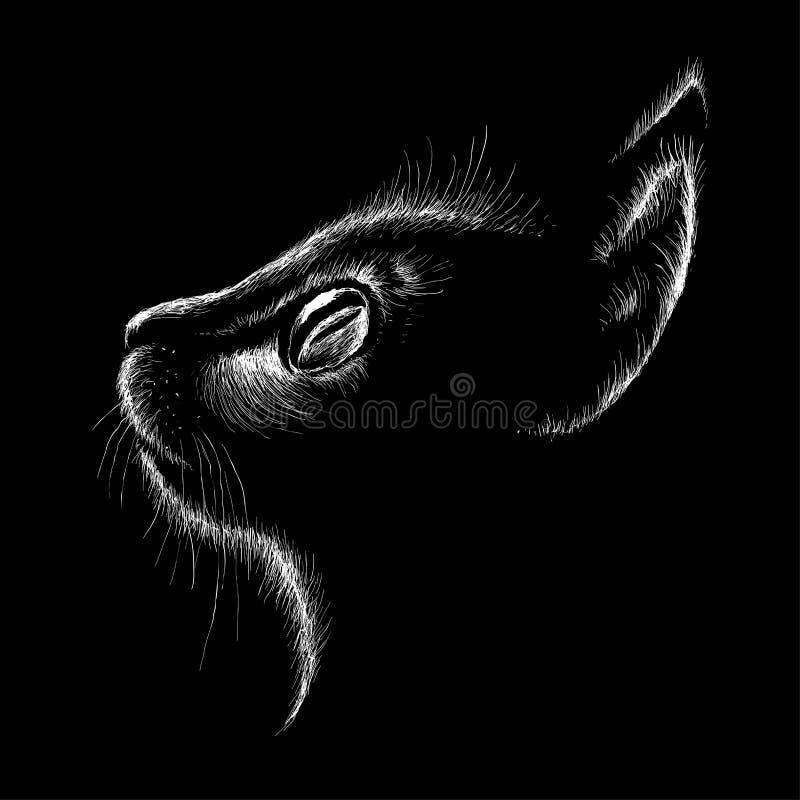 Η διανυσματική γάτα λογότυπων για το σχέδιο μπλουζών ή outwear Υπόβαθρο ύφους γατών κυνηγιού στοκ φωτογραφία με δικαίωμα ελεύθερης χρήσης
