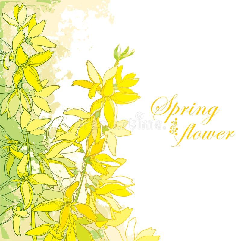 Η διανυσματική δέσμη με το λουλούδι Forsythia περιλήψεων, κλάδος, φεύγει σε κίτρινο που απομονώνεται στο κατασκευασμένο υπόβαθρο  διανυσματική απεικόνιση
