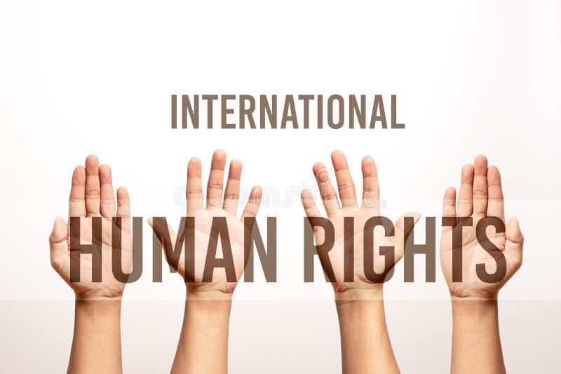 Η διεθνής έννοια ημέρας των ανθρώπινων δικαιωμάτων, αυξάνει το χέρι επάνω στοκ φωτογραφία με δικαίωμα ελεύθερης χρήσης