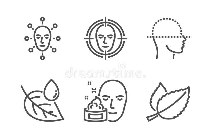 Η δροσιά φύλλων, η κρέμα προσώπου και το πρόσωπο ανιχνεύουν τα εικονίδια καθορισμένα Σημάδι φύλλων μεντών Πτώση νερού, πήκτωμα :  απεικόνιση αποθεμάτων