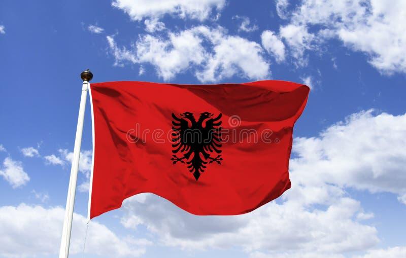 Η εθνική σημαία της Αλβανίας, δύο-διευθυνμένος μαύρος αετός στοκ εικόνες