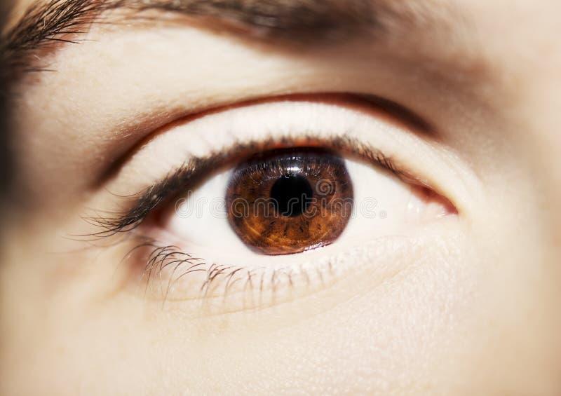 Η εικόνα όμορφου οξυδερκούς ατόμων ` s φαίνεται στενή επάνω ματιών στοκ εικόνα