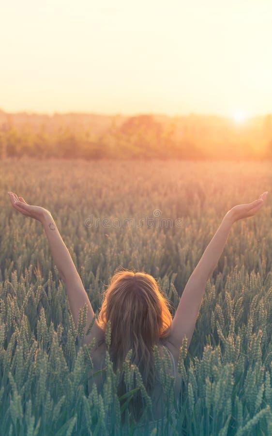 Η ειρήνη και η αγάπη, hipster γυναίκα γιορτάζουν τη γέννηση του ήλιου σε έναν τομέα σίτου στοκ φωτογραφία
