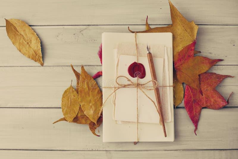 Η εκλεκτής ποιότητας μάνδρα και το φθινόπωρο βγάζουν φύλλα στοκ φωτογραφίες με δικαίωμα ελεύθερης χρήσης