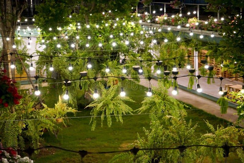 Η ελαφριά γραμμή βολφραμίου διακοσμήθηκε στον κήπο εμπορευματοκιβωτίων τη νύχτα στοκ εικόνα