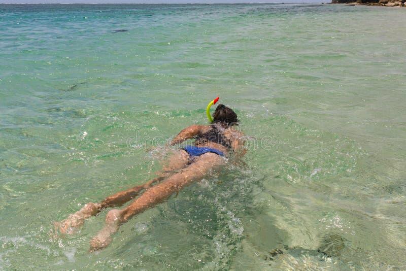 Η εναέρια άποψη της νέας γυναίκας στο φωτεινό μπικίνι κολυμπά στη διαφανή, μπλε θάλασσα Τοπ άποψη λεπτό να επιπλεύσει γυναικών επ στοκ φωτογραφίες