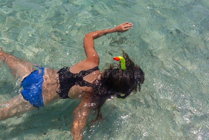Η εναέρια άποψη της νέας γυναίκας στο φωτεινό μπικίνι κολυμπά στη διαφανή, μπλε θάλασσα Τοπ άποψη λεπτό να επιπλεύσει γυναικών επ στοκ φωτογραφίες με δικαίωμα ελεύθερης χρήσης