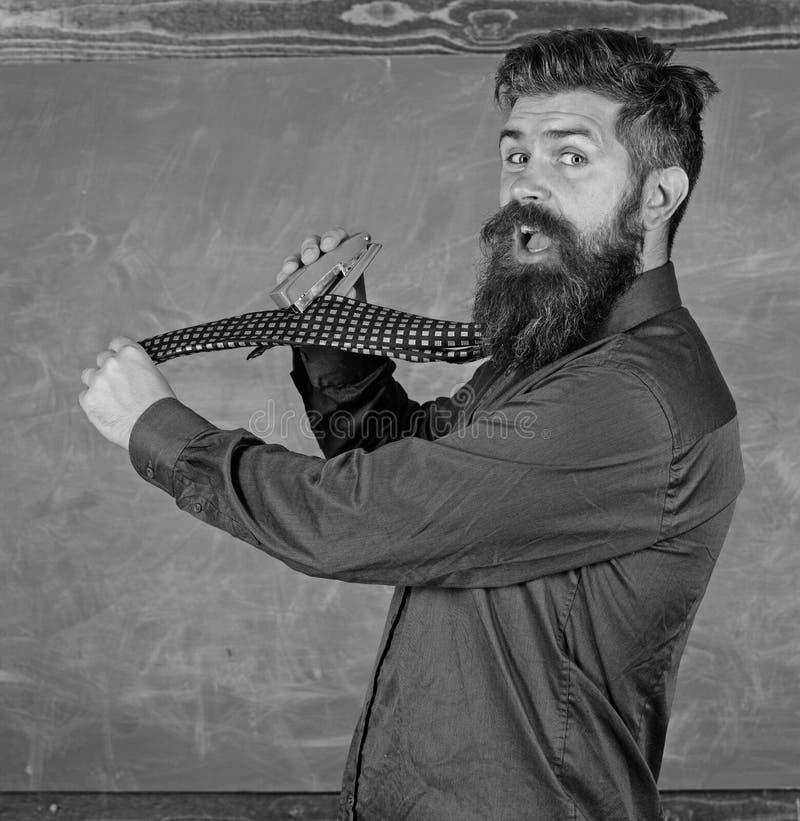 Η επίσημη γραβάτα ένδυσης δασκάλων Hipster κρατά stapler Σχολικά χαρτικά Stapler χρήσης ατόμων ατημέλητος επικίνδυνος τρόπος δάσκ στοκ φωτογραφίες με δικαίωμα ελεύθερης χρήσης