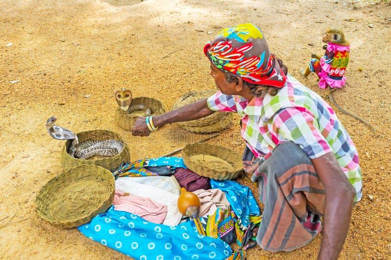 Η επίδειξη με τα cobras στοκ εικόνα με δικαίωμα ελεύθερης χρήσης