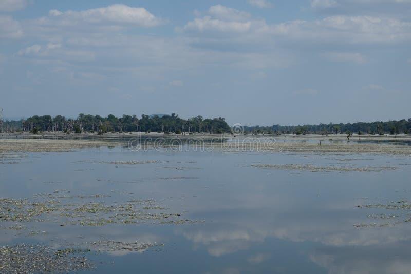Η επιφάνεια της λίμνης, η οποία απεικονίζει τα σύννεφα r Ουρανός και έλος στοκ φωτογραφία