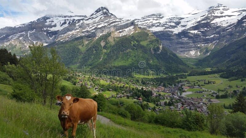 Η ελβετική άποψη στοκ εικόνα με δικαίωμα ελεύθερης χρήσης