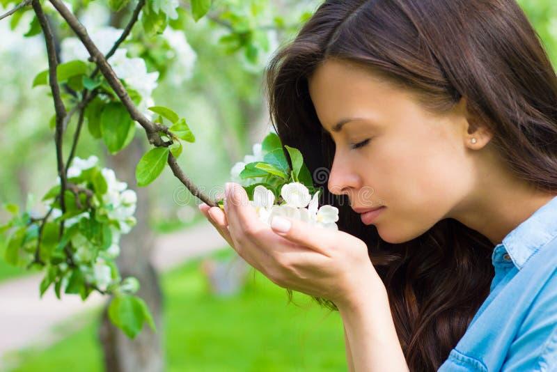 Η ελκυστική νέα γυναίκα μυρίζει το δέντρο μηλιάς στοκ εικόνα με δικαίωμα ελεύθερης χρήσης