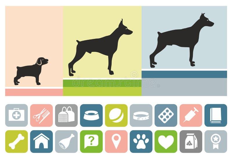 Η ηλικία του σκυλιού ελεύθερη απεικόνιση δικαιώματος