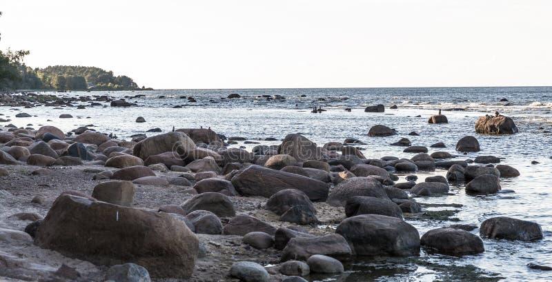 Η θάλασσα της Βαλτικής με τις μεγάλες πέτρες στο νερό και την ακτή στοκ φωτογραφία