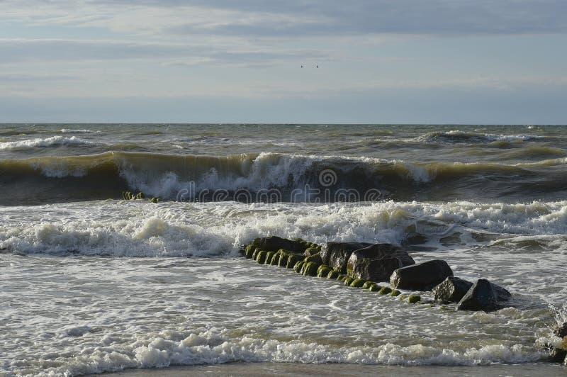 Η θάλασσα της Βαλτικής σε μια θύελλα στοκ εικόνα με δικαίωμα ελεύθερης χρήσης