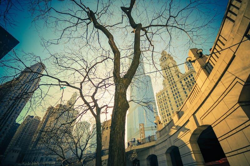 Η θέση του Σικάγου στοκ φωτογραφίες με δικαίωμα ελεύθερης χρήσης