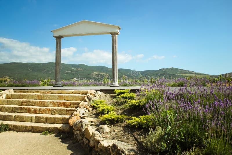 Η θαυμάσια ελληνική αψίδα καταπληκτικές απόψεις των αμπελώνων και των βουνών της Κριμαίας και ανθίζοντας lavender όμορφο τοπίο στοκ εικόνα