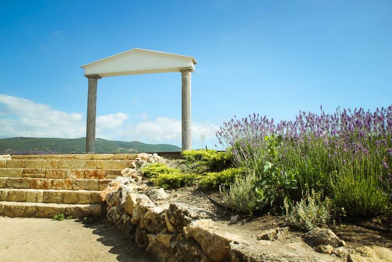 Η θαυμάσια ελληνική αψίδα καταπληκτικές απόψεις των αμπελώνων και των βουνών της Κριμαίας και ανθίζοντας lavender όμορφο τοπίο στοκ εικόνες με δικαίωμα ελεύθερης χρήσης