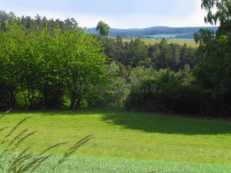 Η θερινή αγροτική λοφώδης επαρχία με το σμαραγδένιο πράσινο λιβάδι, προσπαθεί και καλύπτει στον ουρανό στοκ φωτογραφία με δικαίωμα ελεύθερης χρήσης
