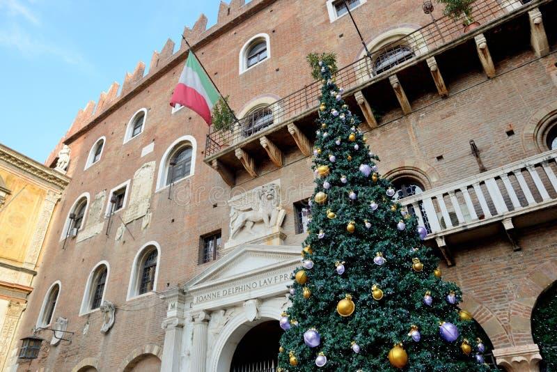Η διακόσμηση δέντρων πεύκων Χριστουγέννων στην πόλη της Βερόνα στοκ εικόνα