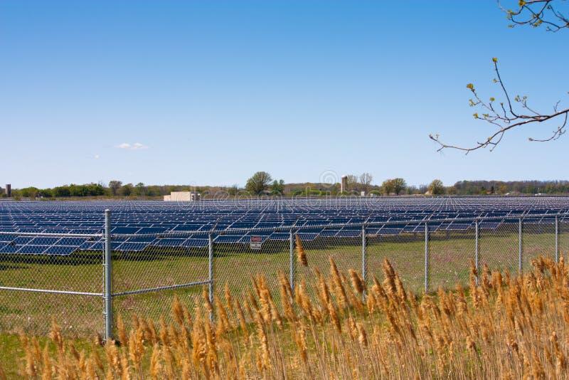 Ηλιακό αγρόκτημα στοκ φωτογραφία