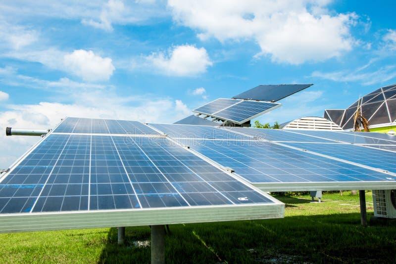 Ηλιακό αγρόκτημα στοκ φωτογραφία με δικαίωμα ελεύθερης χρήσης