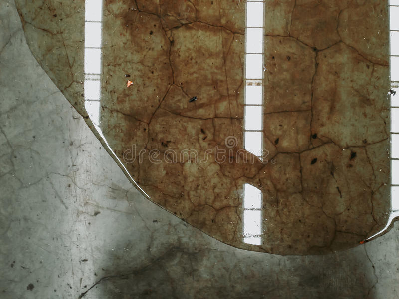 Η διαρροή ελαίου ή νερού στο τσιμεντένιο πάτωμα από το εργοστάσιο, χρειάζεται καθαρό στοκ φωτογραφίες με δικαίωμα ελεύθερης χρήσης