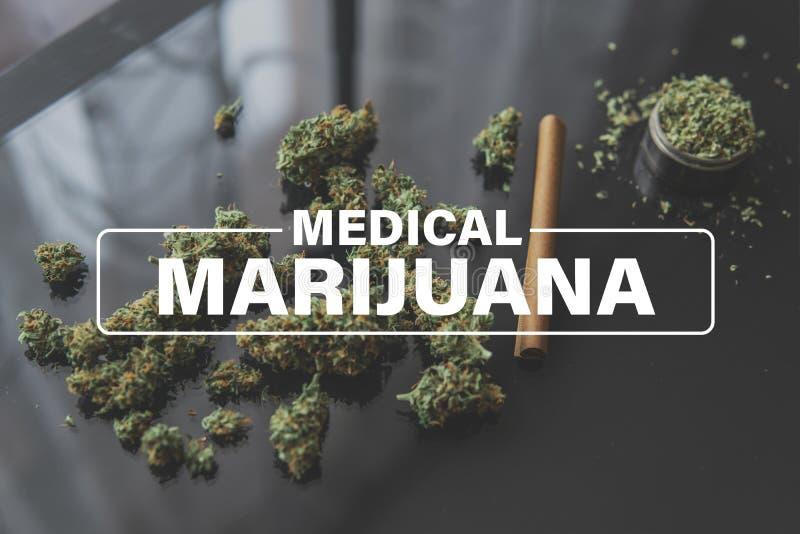 Η ιατρική μαριχουάνα, φύλλα μαριχουάνα, βλάστηση μαριχουάνα η κάνναβη, καννάβεις καλλιέργειας στοκ εικόνα
