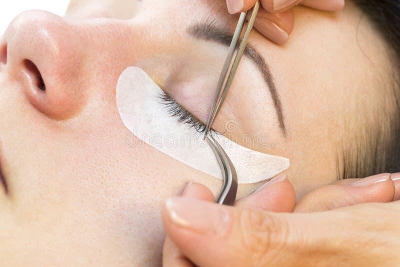 Η διαδικασία των επεκτάσεων eyelash στοκ εικόνα με δικαίωμα ελεύθερης χρήσης