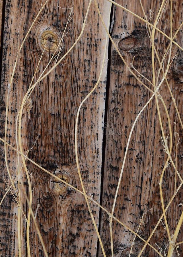 Ηλικίας ξύλο 3 σιταποθηκών στοκ εικόνα με δικαίωμα ελεύθερης χρήσης