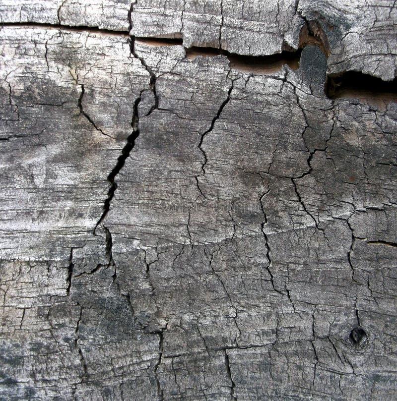 Ηλικίας ξύλο 2 στοκ φωτογραφία με δικαίωμα ελεύθερης χρήσης