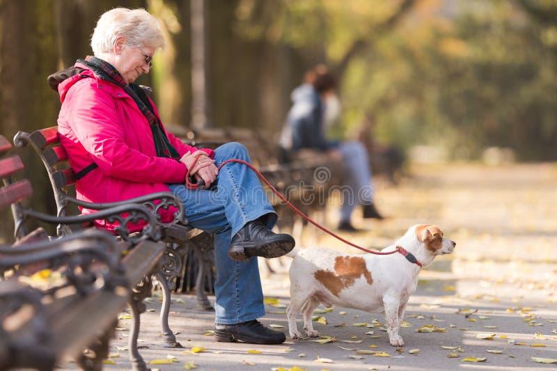 Ηλικιωμένη γυναίκα με ένα σκυλί στοκ εικόνα με δικαίωμα ελεύθερης χρήσης