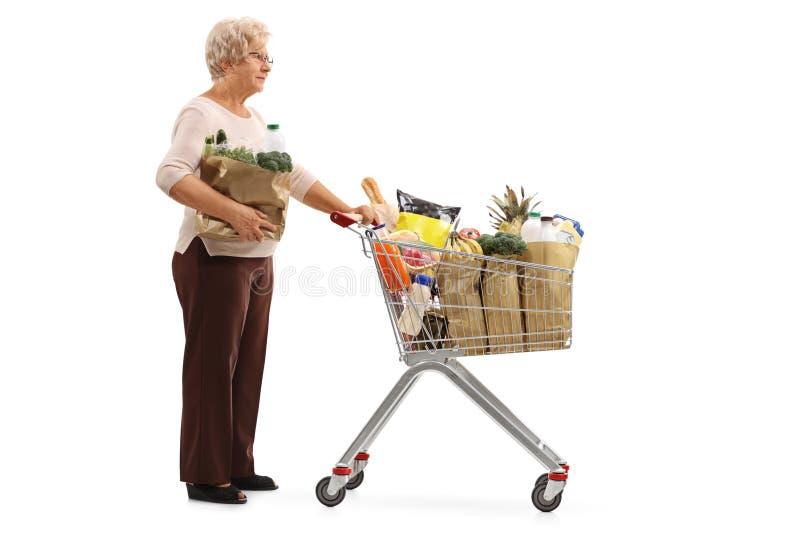 Ηλικιωμένη γυναίκα με την τσάντα και κάρρο αγορών που περιμένει στη γραμμή στοκ εικόνα με δικαίωμα ελεύθερης χρήσης