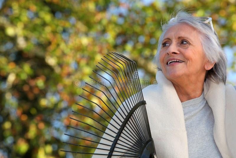 Ηλικιωμένη κυρία που μαζεύει με τη τσουγκράνα τα φύλλα στοκ εικόνες