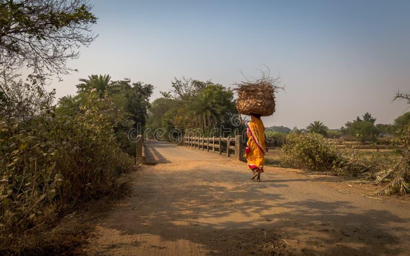 Η ινδική αγρότισσα φέρνει το ξύλο στο κεφάλι της για το κάψιμο στο χωριό της σε Bankura στοκ εικόνα με δικαίωμα ελεύθερης χρήσης