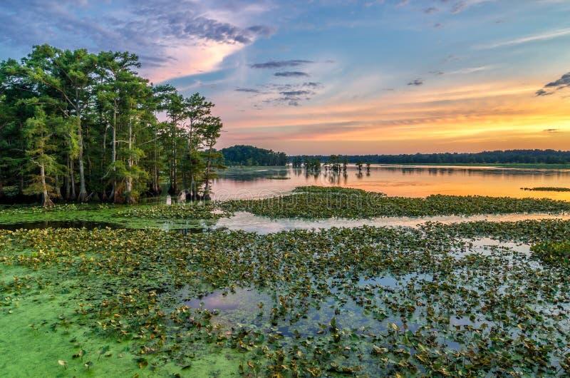 Ηλιοβασίλεμα, λίμνη Reelfoot, Τένεσι στοκ εικόνα με δικαίωμα ελεύθερης χρήσης