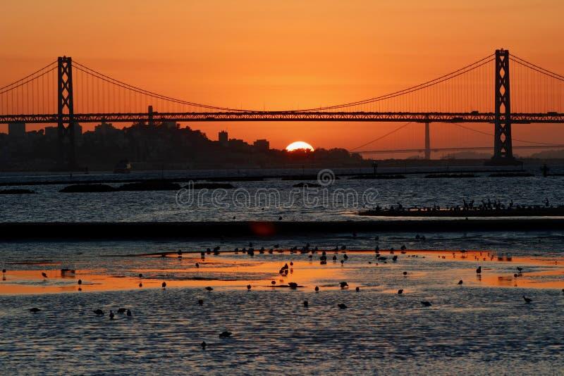 Ηλιοβασίλεμα κόλπων του Σαν Φρανσίσκο που βλέπει από το λιμένα του Όουκλαντ στοκ εικόνα με δικαίωμα ελεύθερης χρήσης