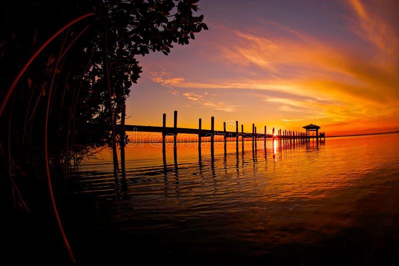 Ηλιοβασίλεμα μαγγροβίων στοκ εικόνα με δικαίωμα ελεύθερης χρήσης